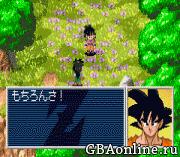 Dragon Ball Z – The Legacy of Goku II International