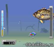 ESPN Great Outdoor Games – Bass 2002