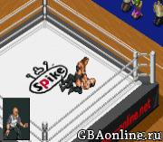 Final Fire Pro Wrestling (english translation)