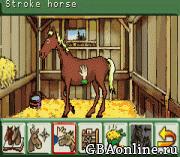 Paard & Pony – Mijn Manege